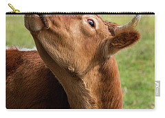 Carry-all Pouch featuring the photograph Tasty by Bill Wakeley