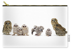 Tawny Owl Family Carry-all Pouch