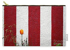 Temple Wall Carry-all Pouch by Ethna Gillespie