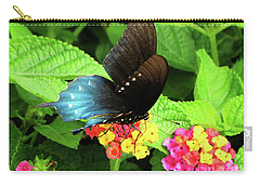 Tennessee Blue And Black Wing Butterfly Carry-all Pouch