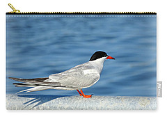 Tern Carry-all Pouch