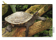 Tess The Map Turtle #3 Carry-all Pouch
