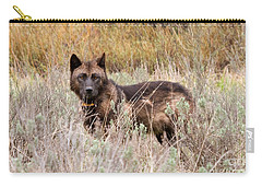 Teton Wolf Carry-all Pouch by Steve Stuller