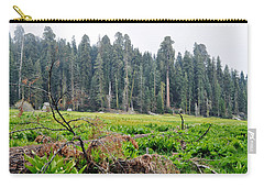 Carry-all Pouch featuring the photograph Tharps Log Meadow by Kyle Hanson