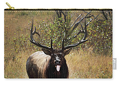 Carry-all Pouch featuring the photograph That Moment When by Shane Bechler
