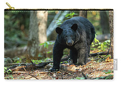 The Bear Carry-all Pouch by Everet Regal