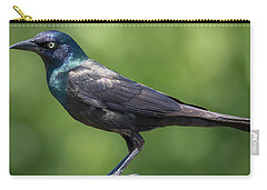 Carry-all Pouch featuring the photograph The Beautiful Common Grackle by Ricky L Jones