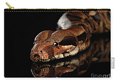 The Boa Constrictors, Isolated On Black Background Carry-all Pouch by Sergey Taran