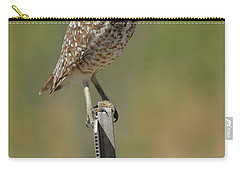 The Burrowing Owl Carry-all Pouch by Steve McKinzie