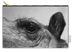The Camels Eye  Carry-all Pouch