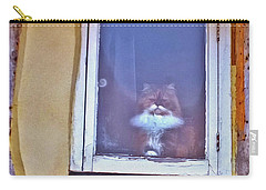 The Cat In The Window Carry-all Pouch by Anne Kotan