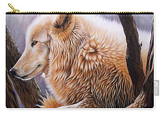 The Daystar Carry-all Pouch
