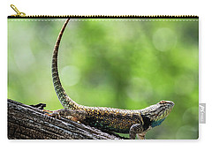 Carry-all Pouch featuring the photograph The Desert Spiny Stance  by Saija Lehtonen