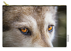 Carry-all Pouch featuring the photograph The Eyes Of A Great Grey Wolf by Teri Virbickis