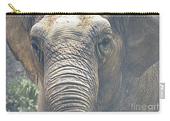 The Eyes Of Age Carry-all Pouch