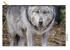 Carry-all Pouch featuring the photograph The Great Gray Wolf by Teri Virbickis