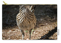 The Greater Roadrunner Walk  Carry-all Pouch by Saija Lehtonen
