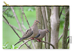 Carry-all Pouch featuring the photograph The Happy Couple by Trina Ansel