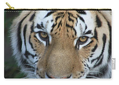 Carry-all Pouch featuring the photograph The Hunter by Laddie Halupa