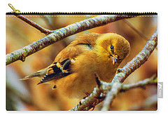 The Inquisitive Goldfinch Carry-all Pouch