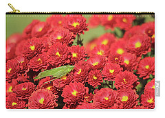 Carry-all Pouch featuring the photograph The Katydid  by Trina Ansel