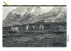 The Lamas Carry-all Pouch by Andrew Matwijec