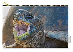 The Laughing Tortoise Carry-all Pouch by Kenneth Albin