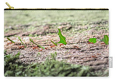 The Leaf Parade  Carry-all Pouch by Betsy Knapp