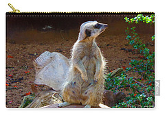 The Lookout - Meerkat Carry-all Pouch