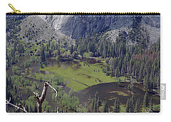 The Meadow From Four Mile Trail Carry-all Pouch