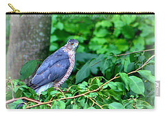 The Merlin Falcon Carry-all Pouch