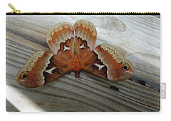 The Moth Carry-all Pouch by Nick Kirby