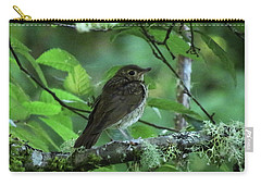 ..the Mysterious Thrush.. Carry-all Pouch by I'ina Van Lawick