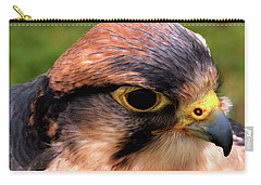 The Peregrine Carry-all Pouch