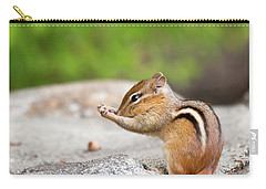 The Praying Chipmunk Carry-all Pouch