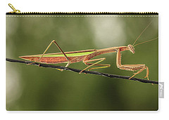 The Praying Mantis And The Antenna Carry-all Pouch