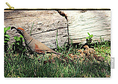 The Quail Family Carry-all Pouch