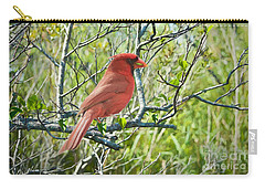 The Red Cardinal Carry-all Pouch by Judy Kay