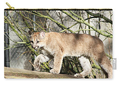 Carry-all Pouch featuring the photograph The Red Carpet by Laddie Halupa
