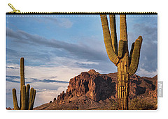 Carry-all Pouch featuring the photograph The Sentinels Of The Supes In Color  by Saija Lehtonen