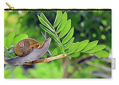 The Snail Carry-all Pouch