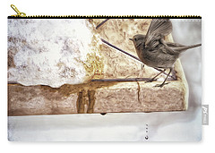 Carry-all Pouch featuring the photograph The Snow Melts by Pennie  McCracken