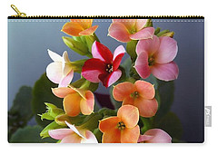Carry-all Pouch featuring the photograph The Special One by Danielle R T Haney