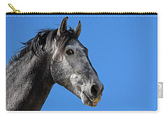 The Stallion Carry-all Pouch
