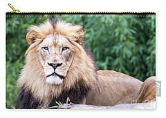The Stare Down Carry-all Pouch