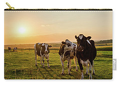 The Sunset Graze Carry-all Pouch