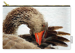 Cygnets Carry-All Pouches