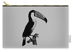 The Toucan Carry-all Pouch