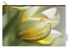 The Quiet One Carry-all Pouch by Connie Handscomb
