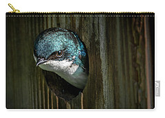 The Tree Swallow Carry-all Pouch